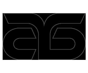 stb logo 300x250