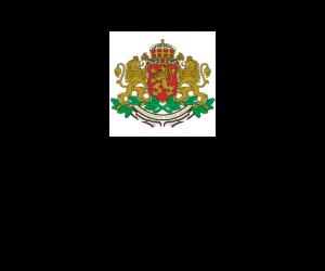 """Награда """"Бисерче вълшебно"""" 2015 - под патронаж на Президента"""